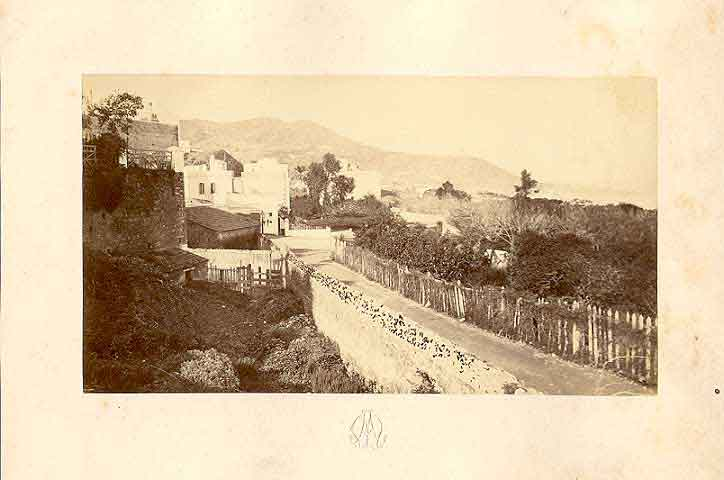 1880_mustapha.jpg