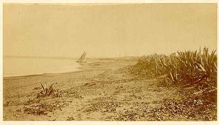 1880_plage.jpg