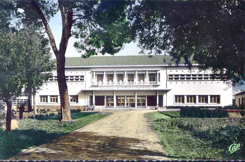 ecole_agriculture_guelma.jpg