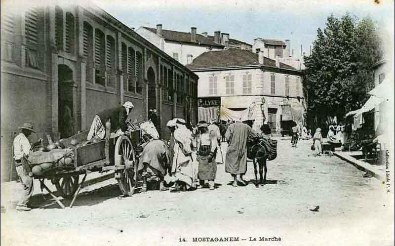 1900_halle.jpg