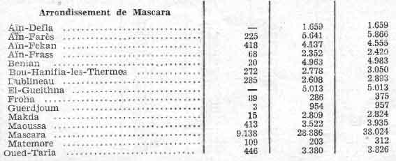 mascara1.jpg