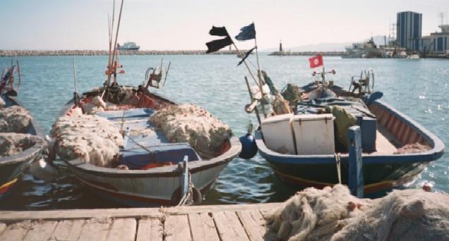 port6.jpg