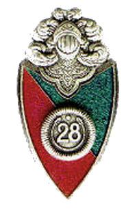 dragon28.jpg