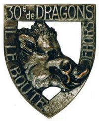 dragon30.jpg