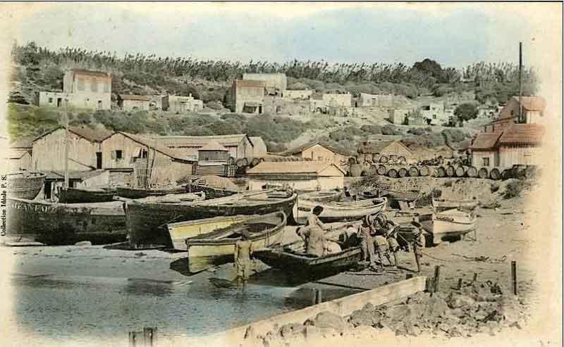 1900_port.jpg