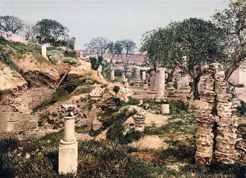 1890_jardin.jpg